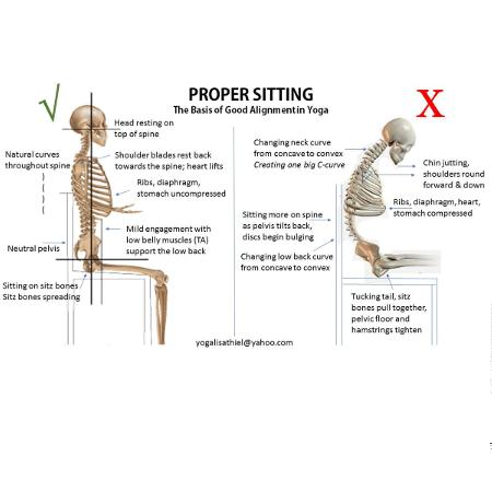 Proper Sitting Posture Bones