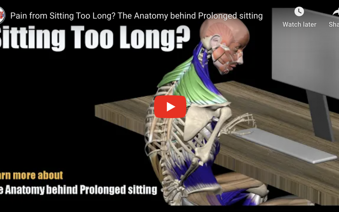 Prolonged Sitting and Back Pain